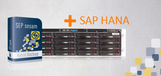 SEP_sesam_Backup_Applience_fuer_SAP_HANA