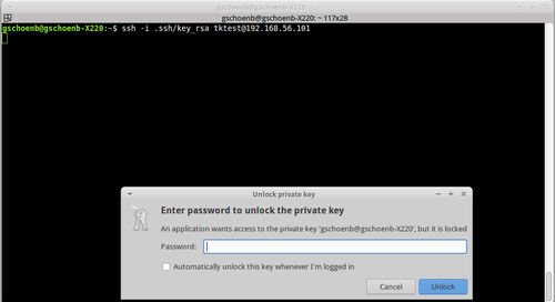 ubuntu generate ssh public private key